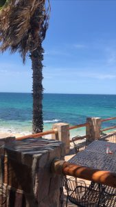 Day Trip from San Jose Del Cabo