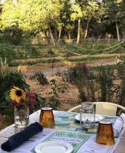 The view of the garden at Flora Farms