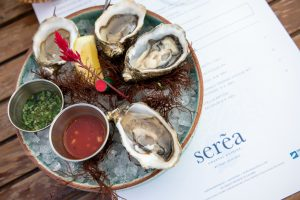Oysters in Coronado at Serea